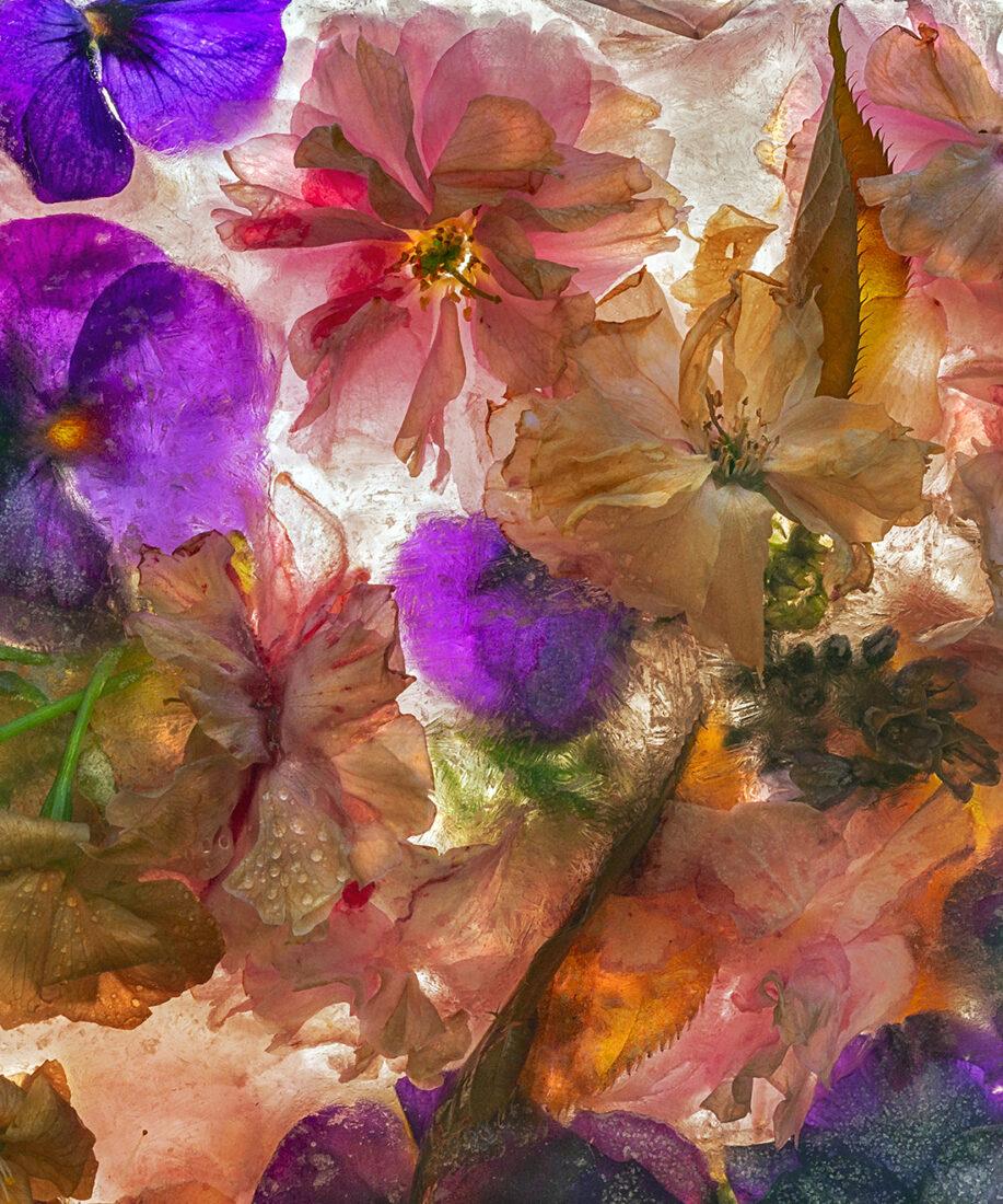 Frozen Spring - 125 x150 cm